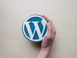 wordpress pluginok